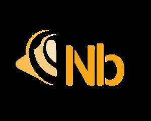 Logo Nicolas Burdet détouré