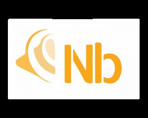 Logo Nicolas Burdet non détouré